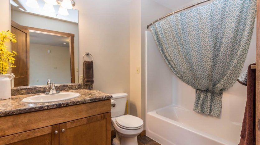 6th Street Centre Apartments in Brookings, SD - Bathroom
