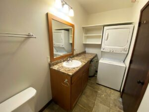 Downtown Lofts in Brookings, SD - 2 Bed Apartment Bathroom Vanity, Washer and Dryer