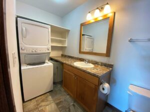 Downtown Lofts in Brookings, SD - 1 Bed Apartment Bathroom Vanity and Laundry