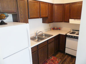 Lakeview Terrace Apartments in Chamberlain, SD - Alternate Kitchen View