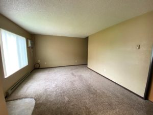 olony West Townhomes in Watertown, SD - Living Room (Alternative Layout)