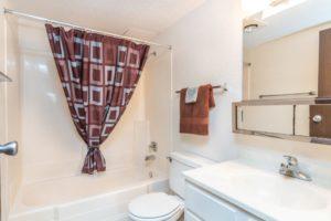 Onaka Village Apartments in Brookings, SD - Bathroom