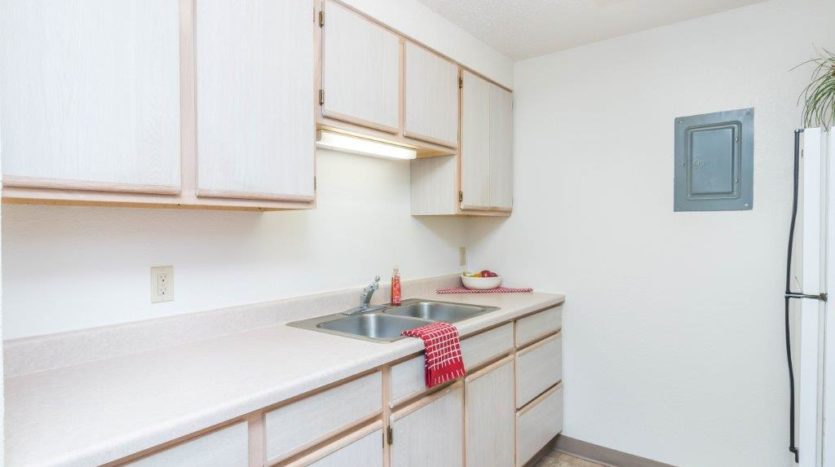 Onaka Village Apartments in Brookings, SD - Kitchen Sink