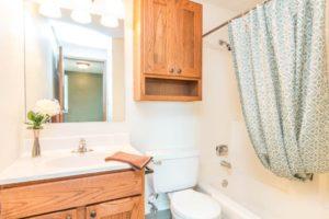 Onaka Village Apartments in Brookings, SD - Updated Vanity