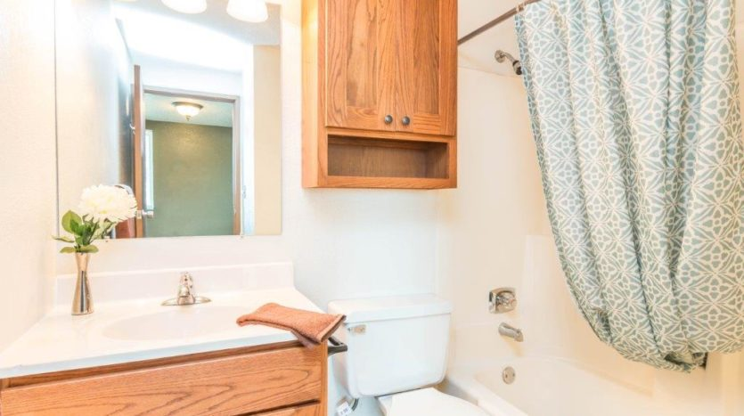 Onaka Village Apartments in Brookings, SD - Updated Vanity