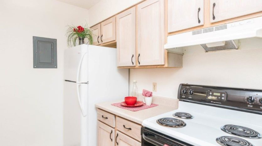 Onaka Village Apartments in Brookings, SD - Kitchen Cabinets