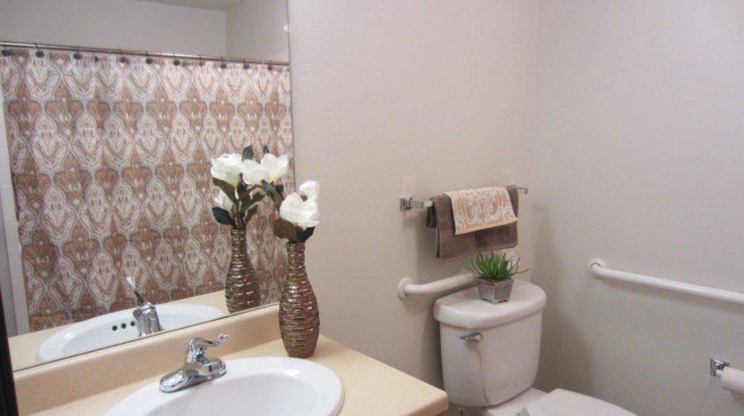 Pheasant Run Apartments in Brookings, SD - Alternative Bathroom