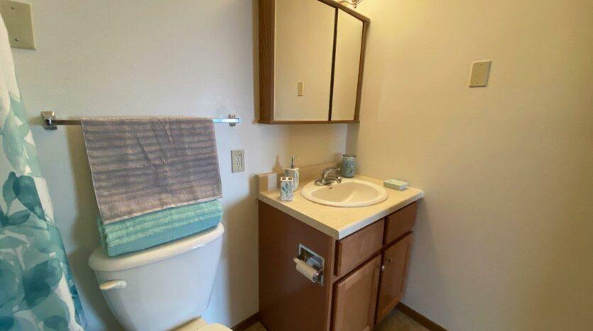 Pheasant Valley Courtyard Apartments in Milbank, SD - Bathroom Vanity
