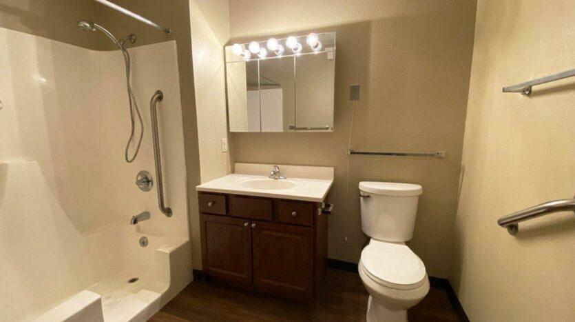 Briarwood Apartments in Brookings, SD - Bathroom Vanity