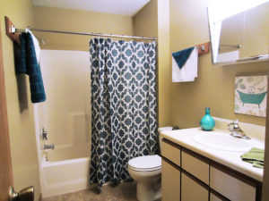 Campus View Apartments in Brookings, SD - Bathroom Space