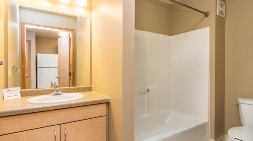 Campus Tech Apartments in Mitchell, SD - Studio Bathroom