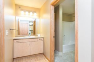 Campus Tech Apartments in Mitchell, SD - Bathroom Vanity