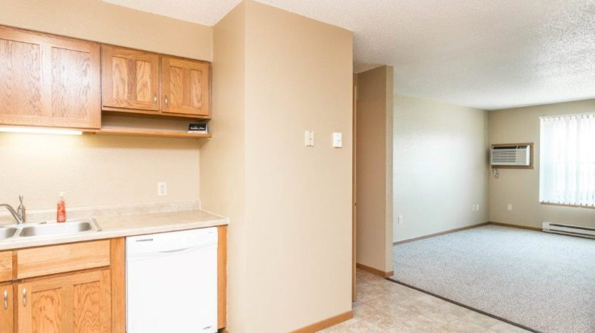 Campus View Apartments in Brookings, SD - Dishwasher