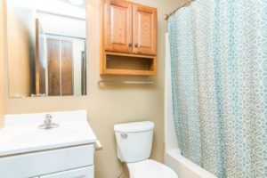 Village Square Apartments in Brookings, SD - Bathroom View