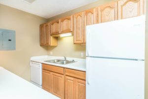 Village Square Apartments in Brookings, SD - Kitchen with Dishwasher