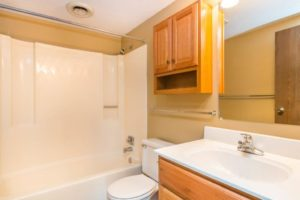 Village Square Apartments in Brookings, SD - Bathroom