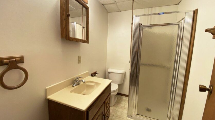 1005 Orchard Drive in Brookings, SD - Basement Bathroom
