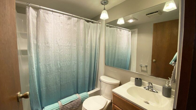1005 Orchard Drive in Brookings, SD - Main Level Bathroom