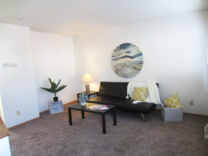 Palace Apartments & Townhomes in Mitchell, SD - 2 Bedroom Apartment Living Room