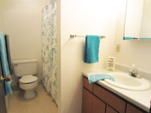 Palace Apartments & Townhomes in Mitchell, SD - 2 Bedroom Apartment Bathroom