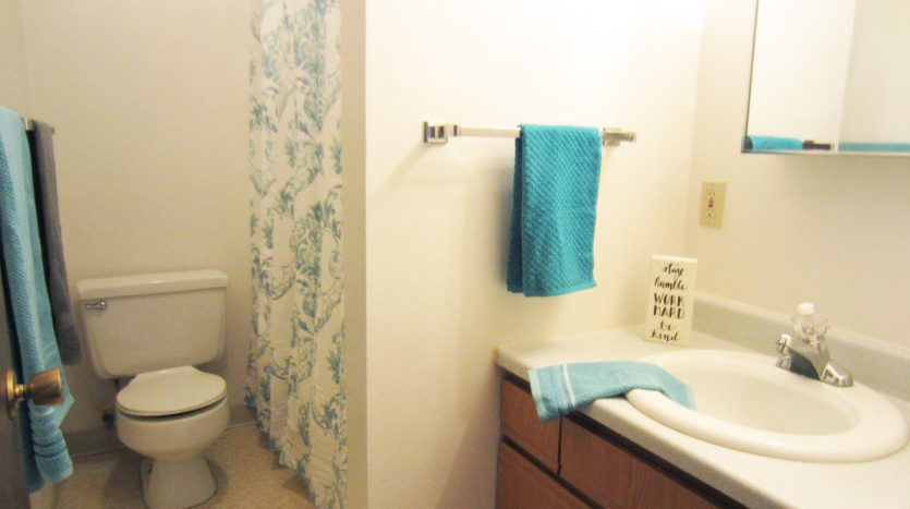 Palace Apartments & Townhomes in Mitchell, SD - Bathroom