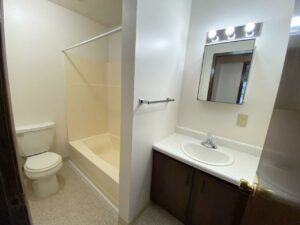 Palace Apartments & Townhomes in Mitchell, SD - 1 Bedroom Apartment Bathroom