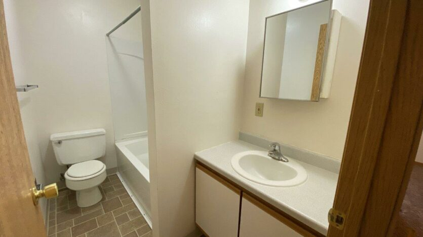 Palace Apartments & Townhomes in Mitchell, SD - 2 Bedroom Townhome Bathroom
