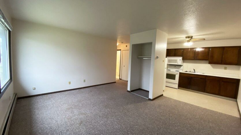 Palace Apartments & Townhomes in Mitchell, SD - 1 Bedroom Apartment Living Area