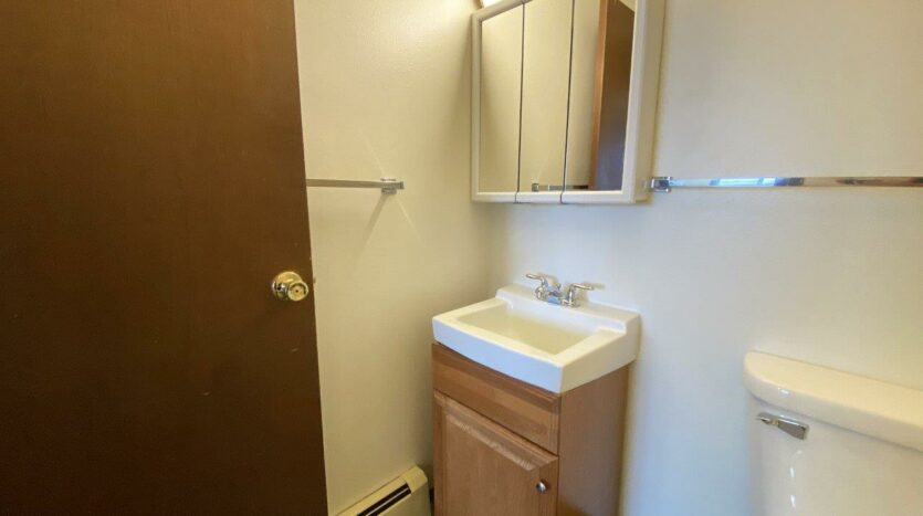 Village Pointe Apartments in Mitchell, SD - Alternative Floor Plan Bathroom Vanity