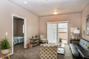 Edgerton Apartments II in Mitchell, SD 1Bed 1Bath-Living Room View