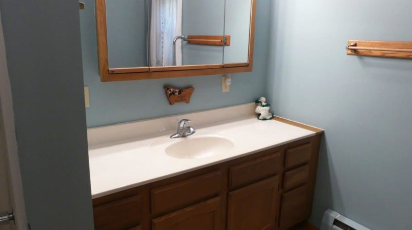 318 1/2 7th Ave South in Brookings, SD - Bathroom Vanity (Upper Level)