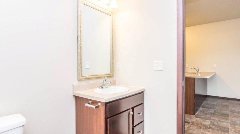 Edgerton Apartments-1Bed 1Bath-Bathroom Vanity