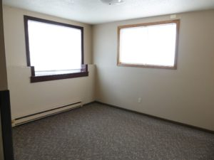 221 Mustang Pass in Brookings, SD - Downstairs Bedroom 1