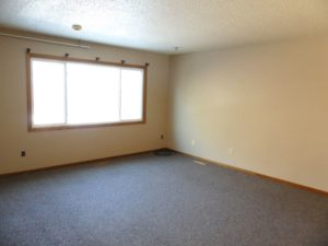 221 Mustang Pass in Brookings, SD - Living Room