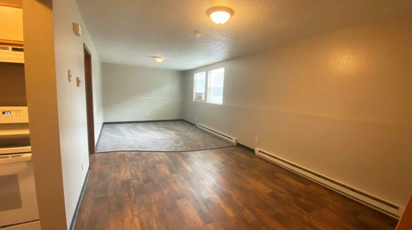 Prairie Circle Apartments in Brookings, SD - Lower Level Apartment Living Area