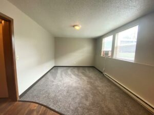 Prairie Circle Apartments in Brookings, SD - Lower Level Apartment Living Room