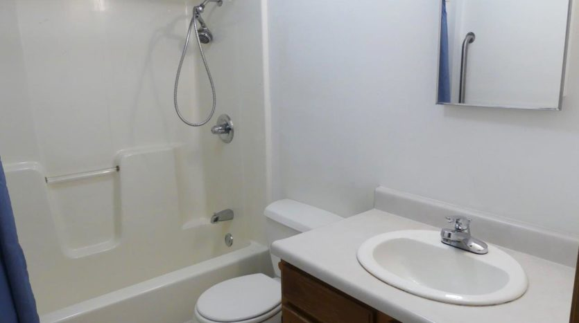 Diamond Acres in Bridgewater, SD - Bathroom