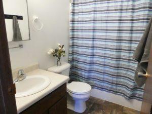 Southtown Apartments in Salem, SD - Bathroom (Alternative Layout)