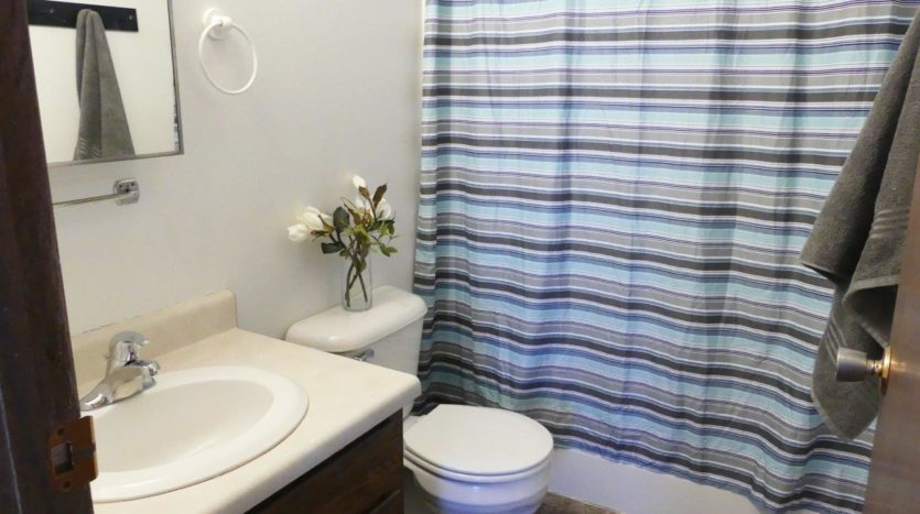 Southtown Apartments in Salem, SD - Bathroom (Alternative Layout)