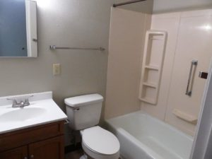 Hill Center Apartments in Salem, SD - Bathroom (Two Bedroom Apartment)