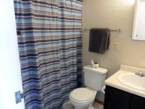 Hill Center Apartments in Salem, SD - Bathroom (One Bedroom Apartment)