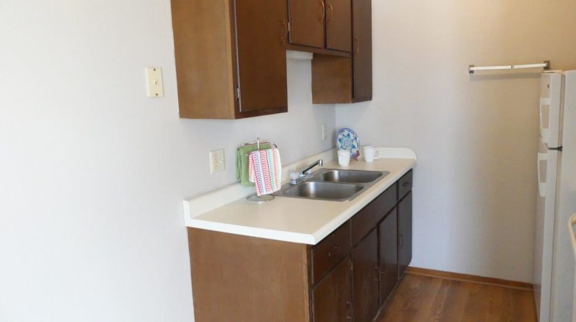Hill Center Apartments in Salem, SD - Kitchen 2 (One Bedroom Apartment)