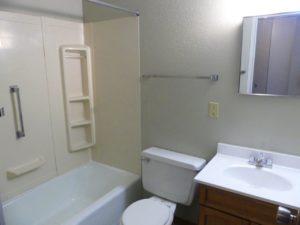 Hill Center Apartments in Salem, SD - Bathroom (Studio Apartment)