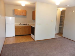 Hill Center Apartments in Salem, SD - Living Area/Kitchen (Studio Apartment)