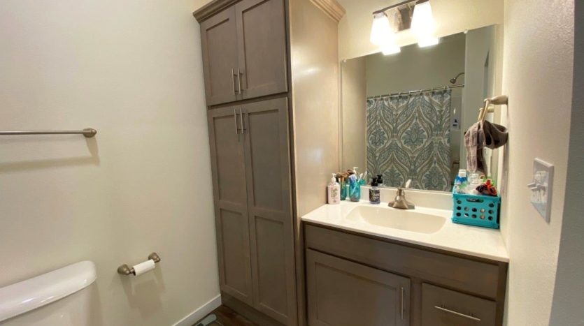 Lake Area Townhomes Phase IIB in Madison, SD - 1 Bedroom Bathroom