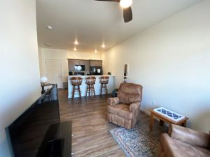 Lake Area Townhomes Phase IIB in Madison, SD - 1 Bedroom Living Area Overview