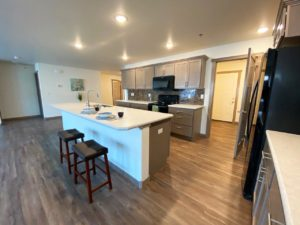 Lake Area Townhomes Phase IIB in Madison, SD - 2 Bedroom Kitchen 5