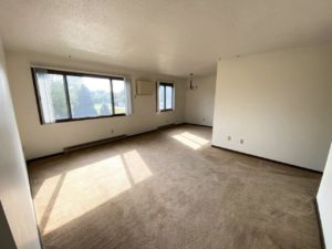 Applecrest Apartments in Big Stone City, SD - Living Area 2