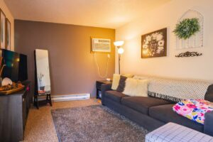 Riverset Apartments in Pierre, SD - 1 Bedroom Living Room2